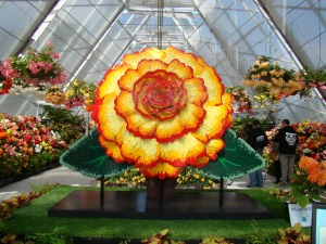 This is a lego version of the 'Begonia of the Year'.